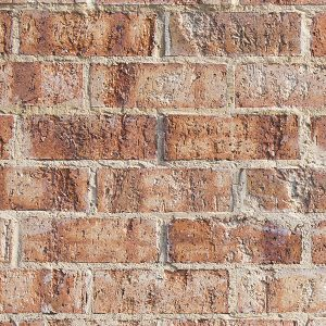 Light Earth Brick Product Image Littlehampton Bricks And Pavers Rs