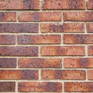 Siena Venice 50mm Brick Product Image Littlehampton Bricks Rs