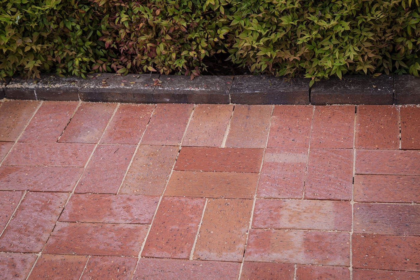Old Red Pavers In Basketweave Pattern Next To Garden