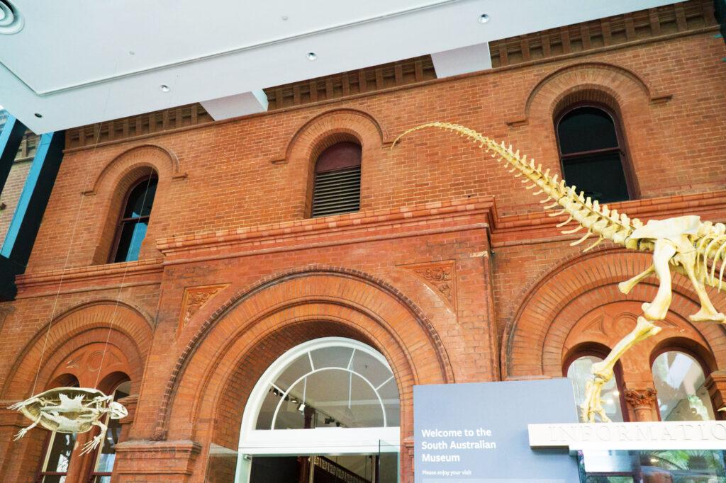 Adelaide Museum Custom Shaped Bricks Littlehampton